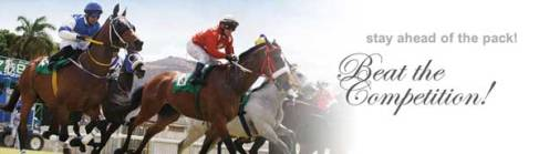 Horse Racing Syndicate - Anglo America Racing