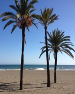 spainvest-marbella-real-estate-property